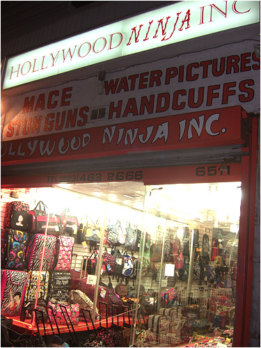 Hollywood Ninja Inc. The best storefront in the history of the world?