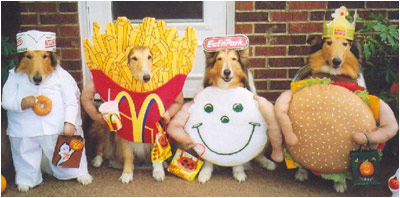 eat us & I-Mockery.comu0027s Halloween Grab Bag - Pet Costumes!