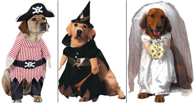 And hereu0027s another sad selection of dogs just waiting to be cuddled by the sweet warm arms of merciful death. Just look at the way the pirate and the witch ... & I-Mockery.comu0027s Halloween Grab Bag - Pet Costumes!