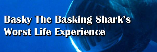 Basky The Basking Shark's Worst Life Experience