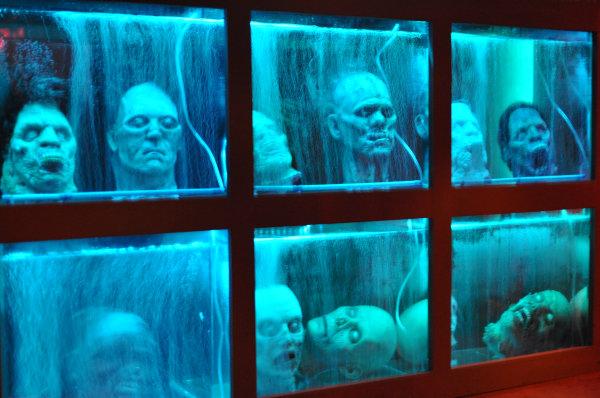 Walking dead head aquarium 1000 aquarium ideas for Zombie fish tank