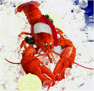 I-Mockery.com - A Special Moment With Bob, The Christmas Lobster