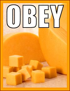 cheese-pic1.jpg